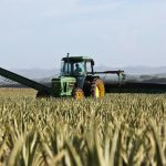 High-Quality Agricultural Fuel Delivered on Time to Keep Your Business Running